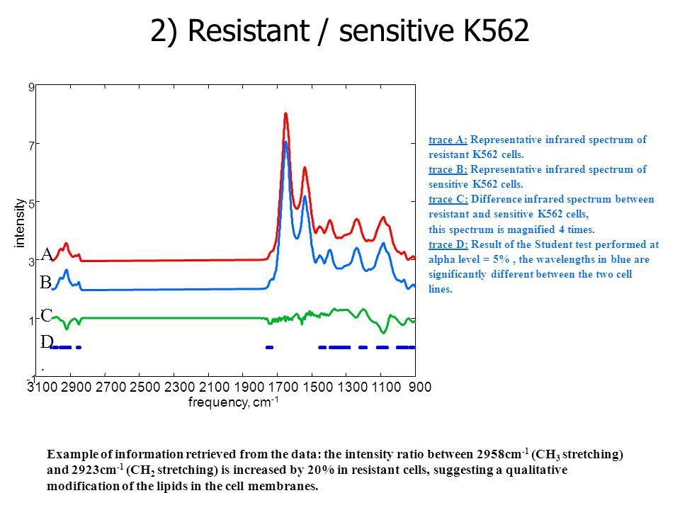 trace A: Representative infrared spectrum of resistant K562 cells. trace B: Representative infrared spectrum of sensitive K562 cells. trace C: Differe