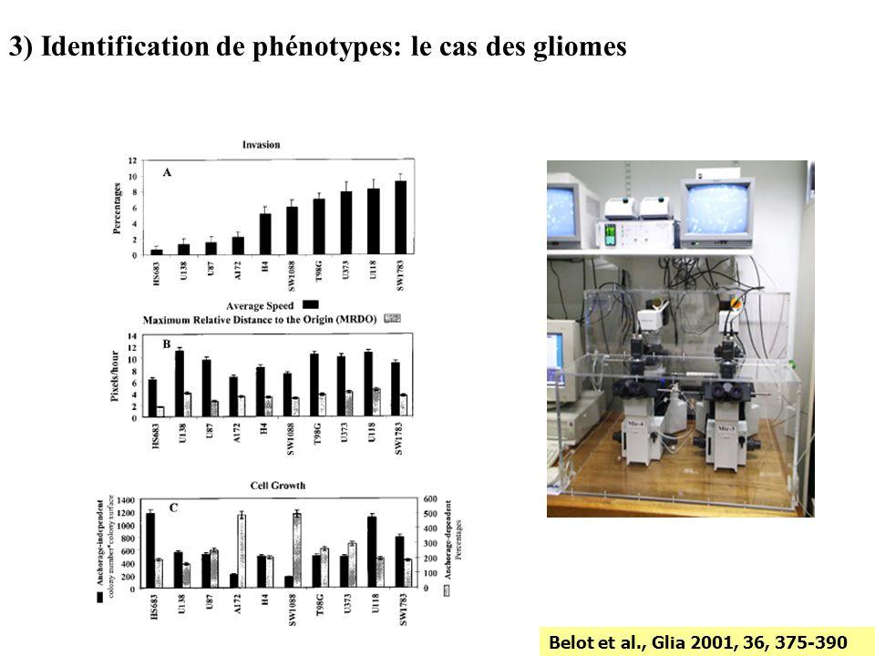 Belot et al., Glia 2001, 36, 375-390 3) Identification de phénotypes: le cas des gliomes