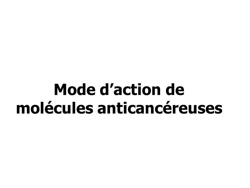 Mode d'action de molécules anticancéreuses