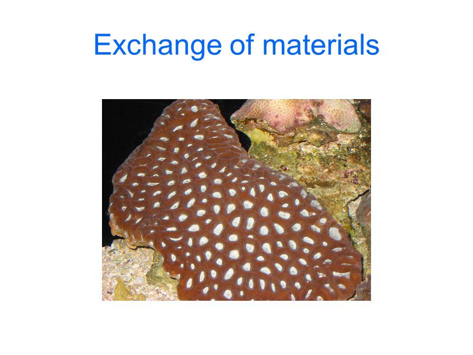Exchange of materials