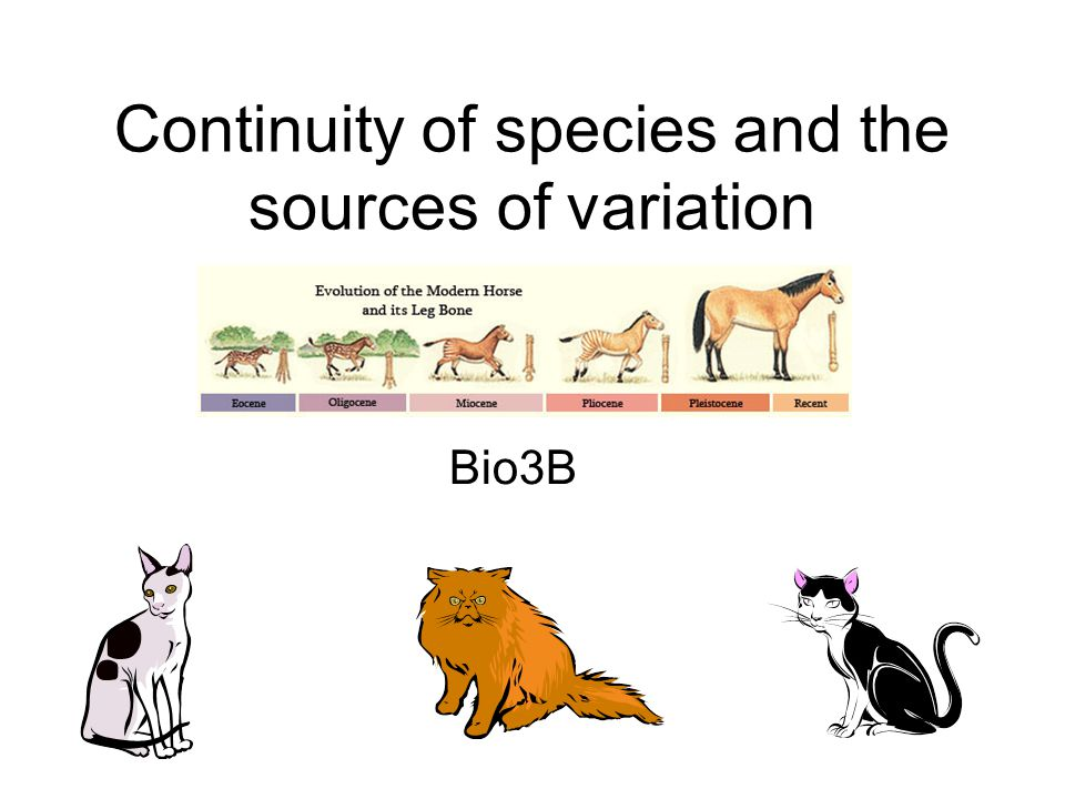 Continuity of species and the sources of variation Bio3B