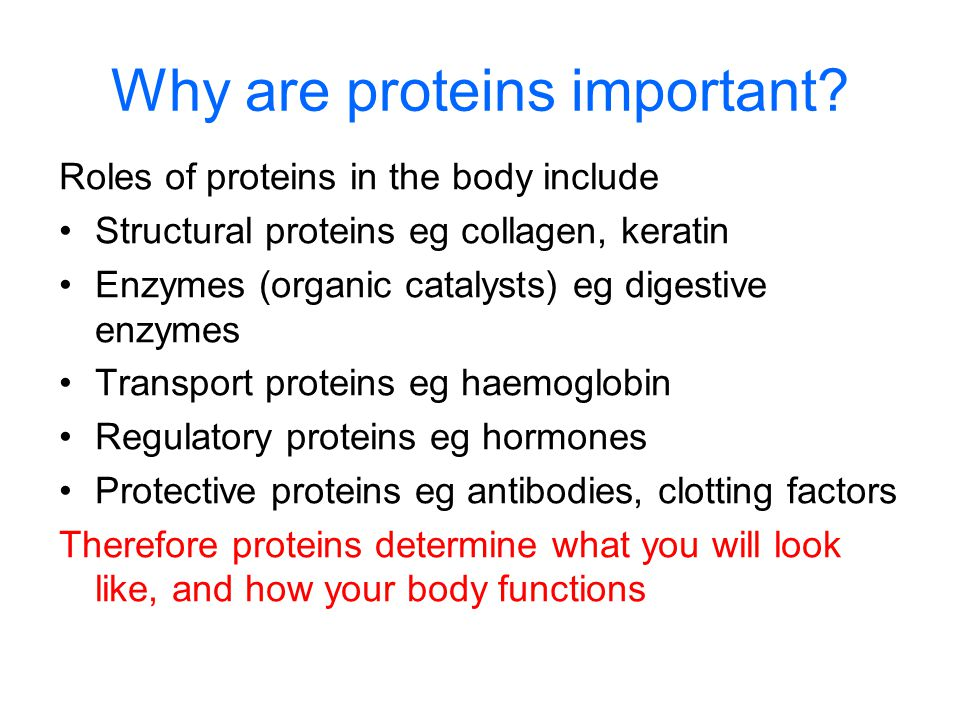 Why are proteins important? Roles of proteins in the body include Structural proteins eg collagen, keratin Enzymes (organic catalysts) eg digestive en
