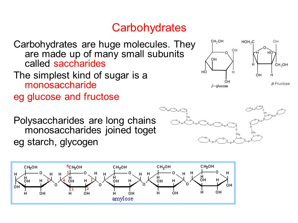 Carbohydrates Carbohydrates are huge molecules. They are made up of many small subunits called saccharides The simplest kind of sugar is a monosacchar