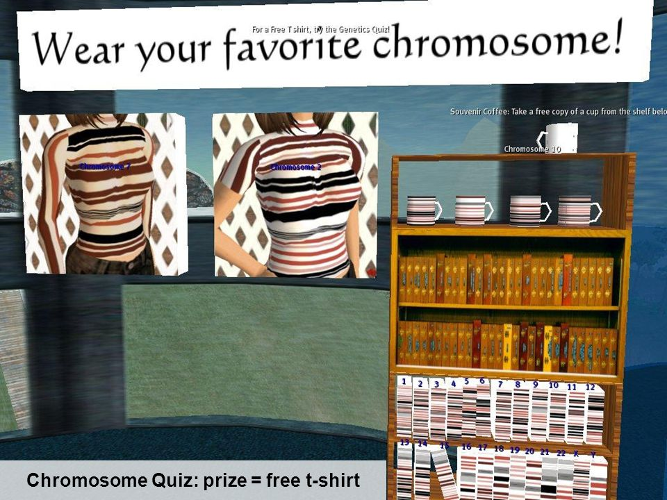 Chromosome Quiz: prize = free t-shirt