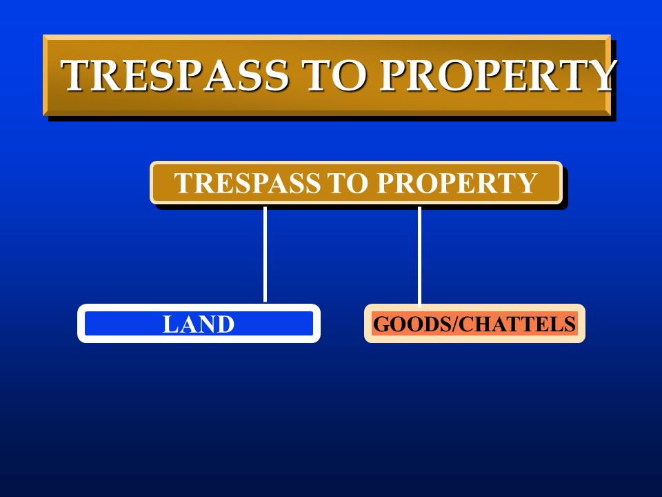 TRESPASS TO PROPERTY LAND GOODS/CHATTELS