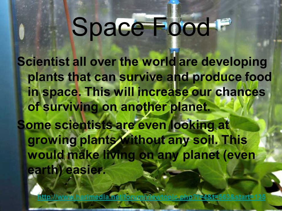 Space Food Scientist all over the world are developing plants that can survive and produce food in space.