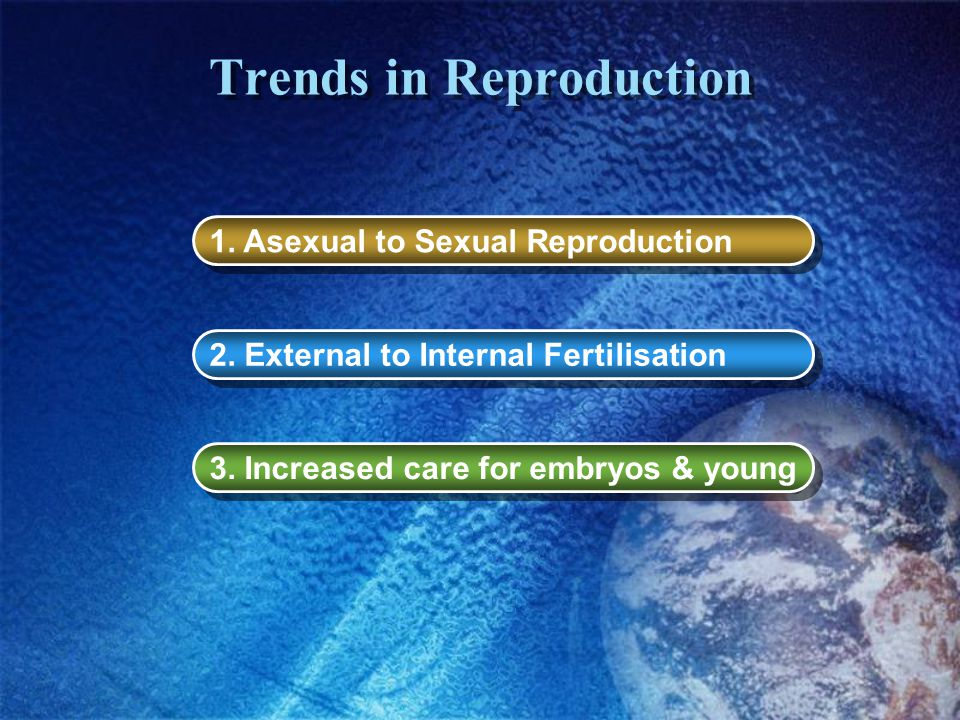 Trends in Reproduction 1. Asexual to Sexual Reproduction 2. External to Internal Fertilisation 3. Increased care for embryos & young