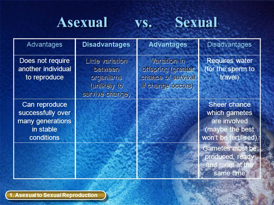 Asexual vs. Sexual AdvantagesDisadvantagesAdvantagesDisadvantages Does not require another individual to reproduce Little variation between organisms