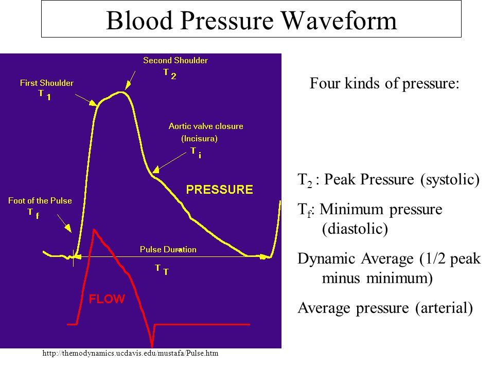 Blood Pressure Waveform Four kinds of pressure: T 2 : Peak Pressure (systolic) T f : Minimum pressure (diastolic) Dynamic Average (1/2 peak minus mini