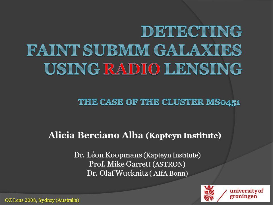 Dr. Léon Koopmans (Kapteyn Institute) Prof. Mike Garrett (ASTRON) Dr. Olaf Wucknitz ( AIfA Bonn) OZ Lens 2008, Sydney (Australia) OZ Lens 2008, Sydney
