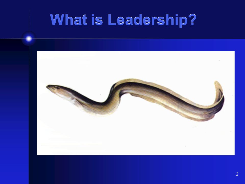 2 What is Leadership?
