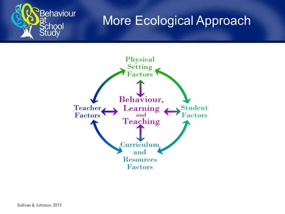 More Ecological Approach Sullivan & Johnson, 2013