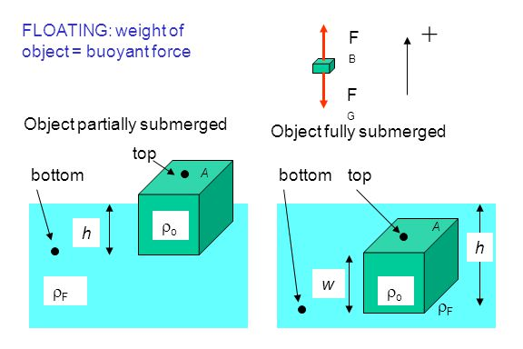 h FF top bottom Object partially submerged A oo h FF topbottom Object fully submerged A oo w FLOATING: weight of object = buoyant force FBFB F
