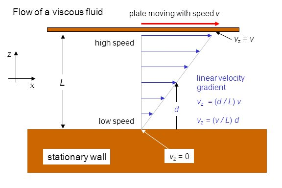 stationary wall L Flow of a viscous fluid low speed high speed plate moving with speed v X Z linear velocity gradient v z = (d / L) v v z = (v / L) d