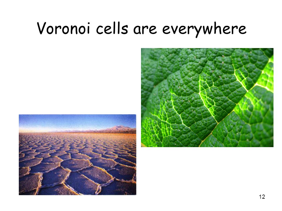 12 Voronoi cells are everywhere