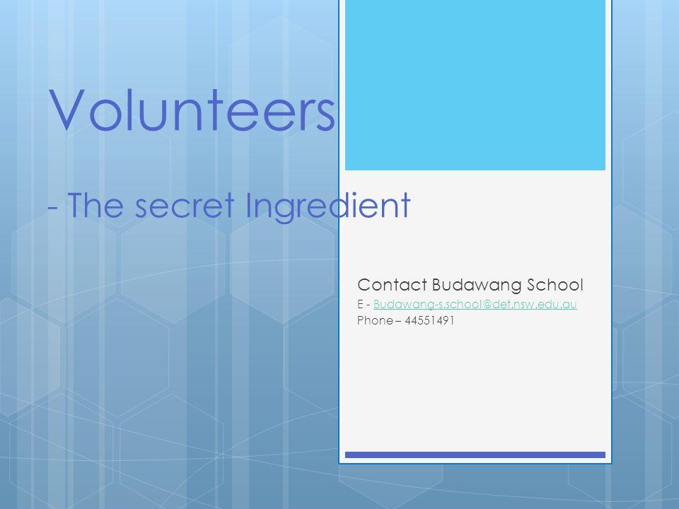 What benefits do volunteers bring to the school.