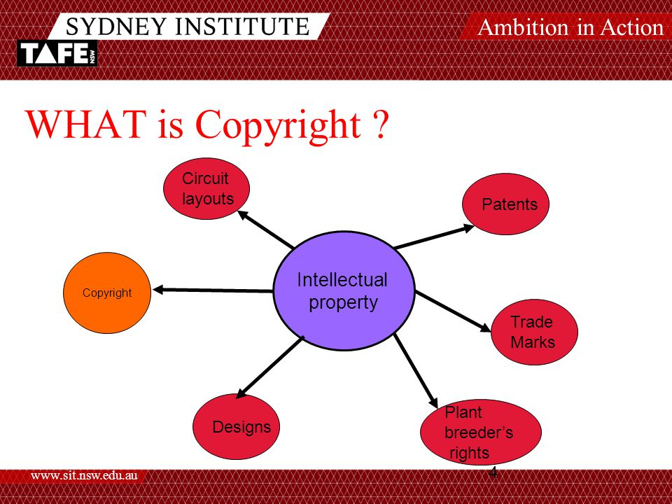 Ambition in Action www.sit.nsw.edu.au 4 WHAT is Copyright .