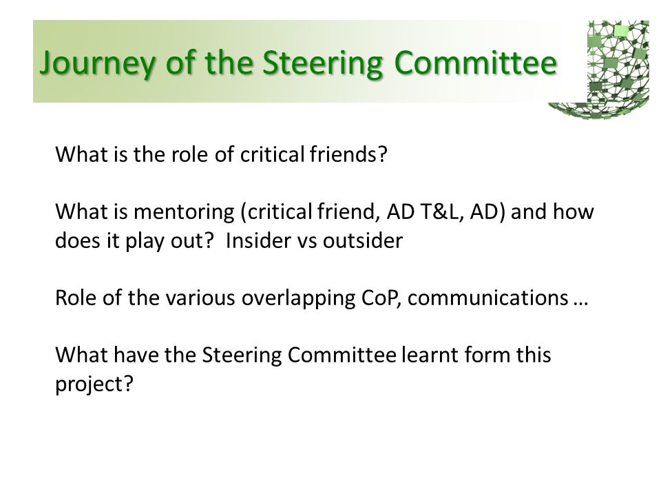 Journey of the Steering Committee What is the role of critical friends? What is mentoring (critical friend, AD T&L, AD) and how does it play out? Insi