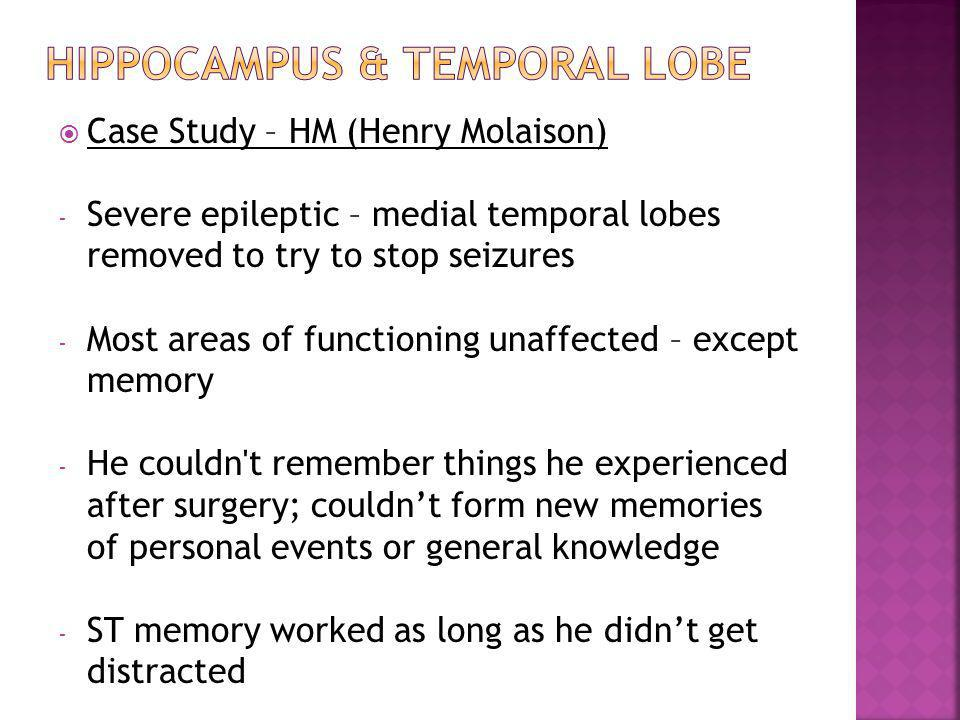  Case Study – HM (Henry Molaison) - Severe epileptic – medial temporal lobes removed to try to stop seizures - Most areas of functioning unaffected –