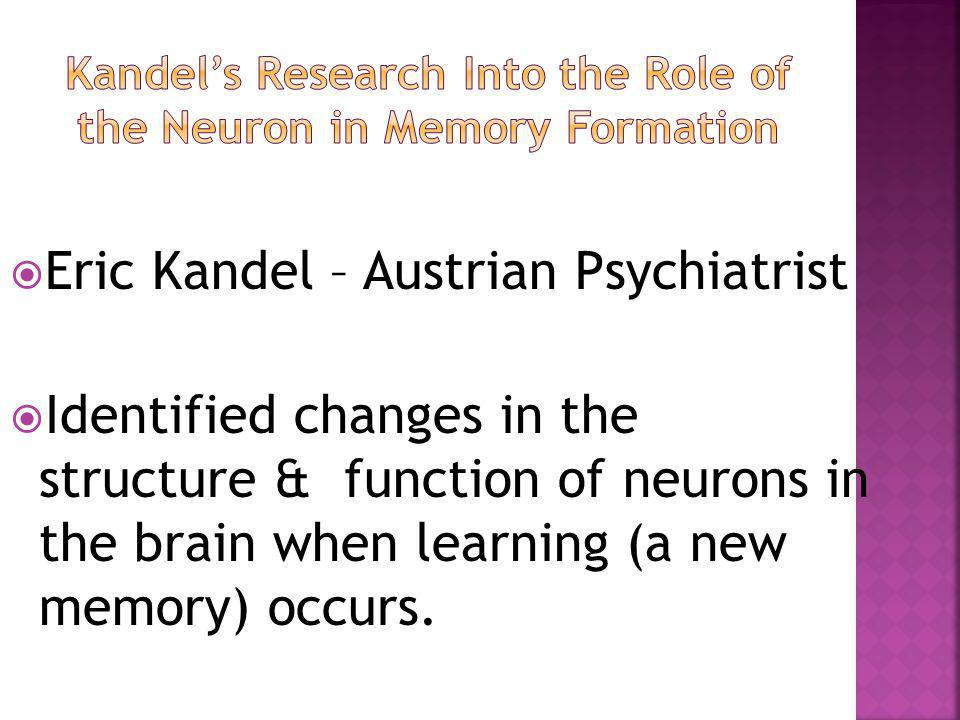 Eric Kandel – Austrian Psychiatrist  Identified changes in the structure & function of neurons in the brain when learning (a new memory) occurs.