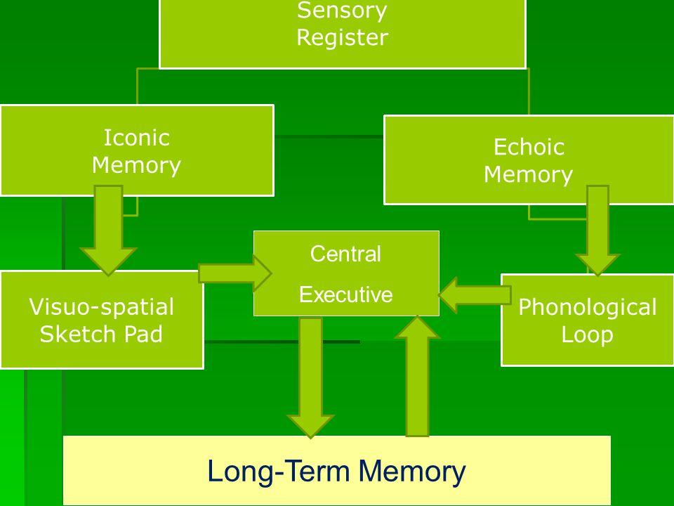 Sensory Register Iconic Memory Visuo-spatial Sketch Pad Echoic Memory Phonological Loop Long-Term Memory Central Executive