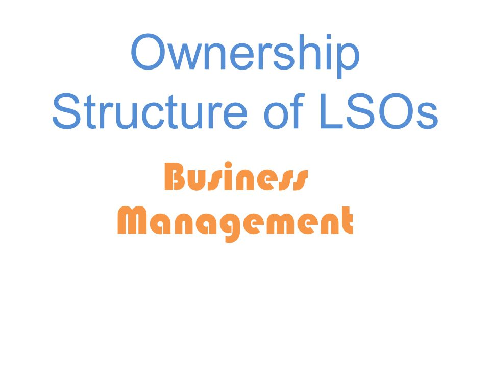 Ownership Structure of LSOs Business Management