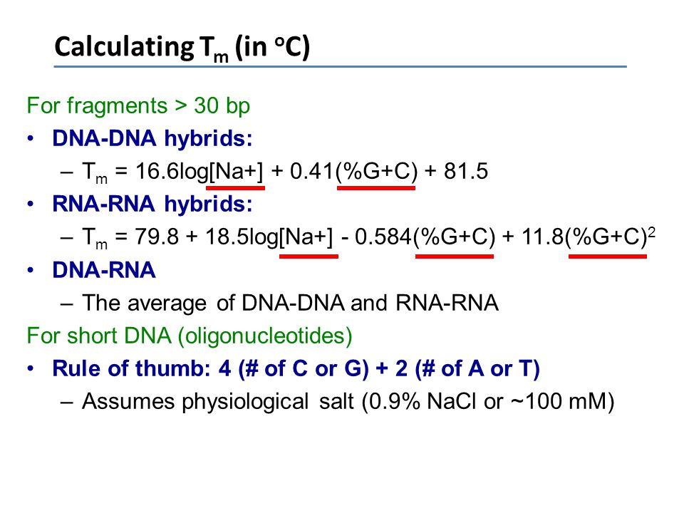 Calculating T m (in o C) For fragments > 30 bp DNA-DNA hybrids: –T m = 16.6log[Na+] + 0.41(%G+C) + 81.5 RNA-RNA hybrids: –T m = 79.8 + 18.5log[Na+] -