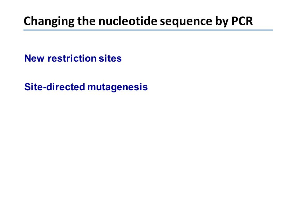 Changing the nucleotide sequence by PCR New restriction sites Site-directed mutagenesis