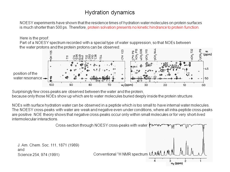 Hydration dynamics J. Am. Chem. Soc.