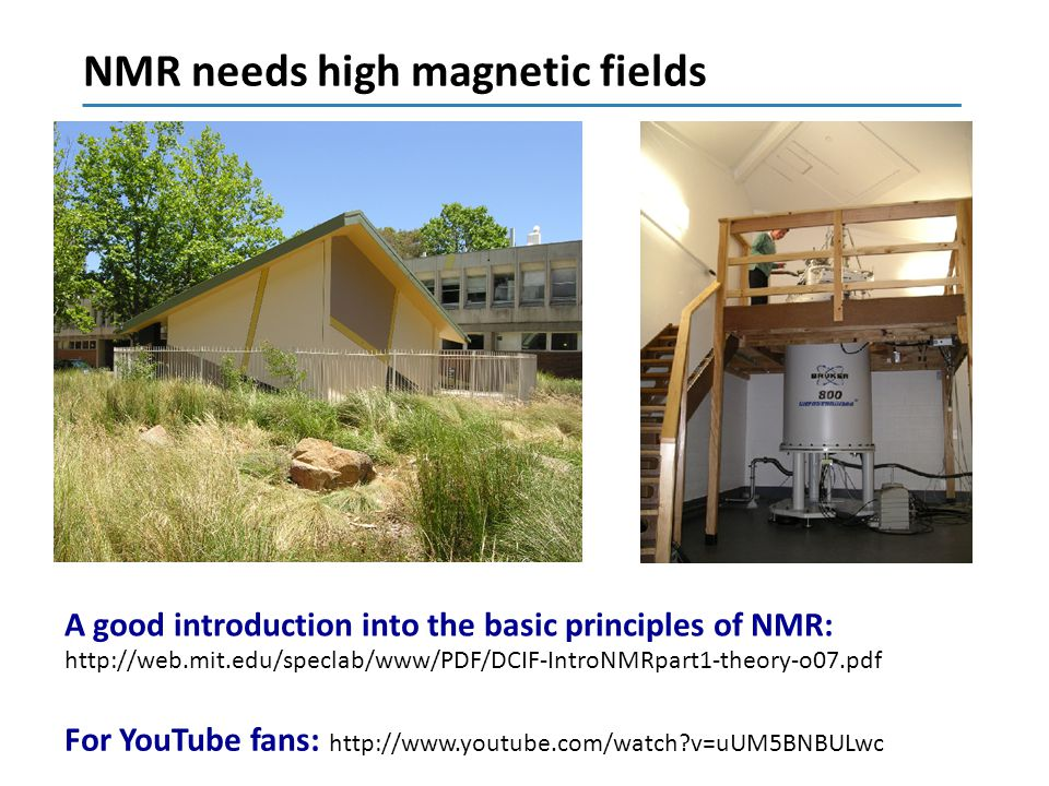 NMR = nuclear magnetic resonance 1 H, 13 C and 15 N nuclei -have a very small magnetic moment: spin 1/2 For a single spin: two energy levels in a magnetic field 2  = -  B 0 : frequency,  : a constant, B 0 : external magnetic field E: energy A spectrum always shows peaks as a function of frequency