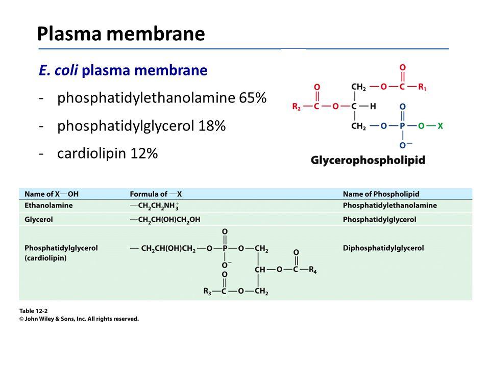 Lipid bilayers Bilayers -plasma membrane -soap bubbles -vesicles
