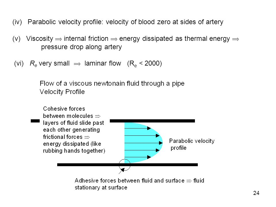 24 (iv) Parabolic velocity profile: velocity of blood zero at sides of artery (v) Viscosity  internal friction  energy dissipated as thermal energy