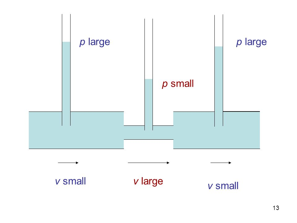 13 v small v large p large p small