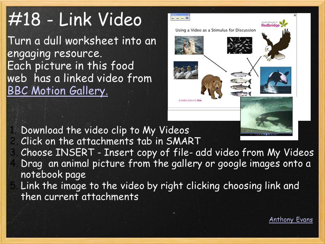 #18 - Link Video Turn a dull worksheet into an engaging resource. Each picture in this food web has a linked video from BBC Motion Gallery. BBC Motion