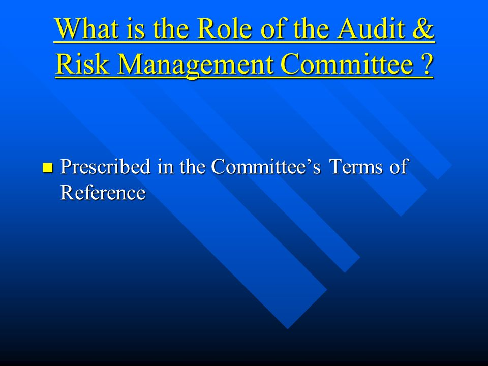 What is the Role of the Audit & Risk Management Committee .