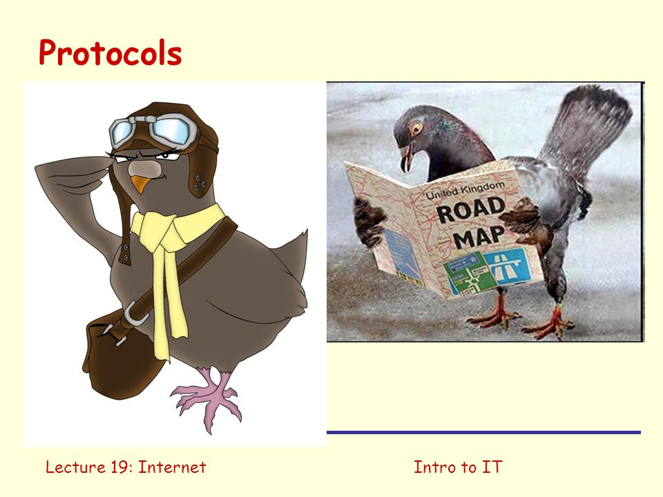 Intro to IT Protocols  Transmission Control Protocol (TCP): basic necessities for data transfer connection-oriented  Internet Protocol (IP): data-oriented necessary for packet-switched network Should run on two tin cans and a string There is an implementation for carrier pigeons...