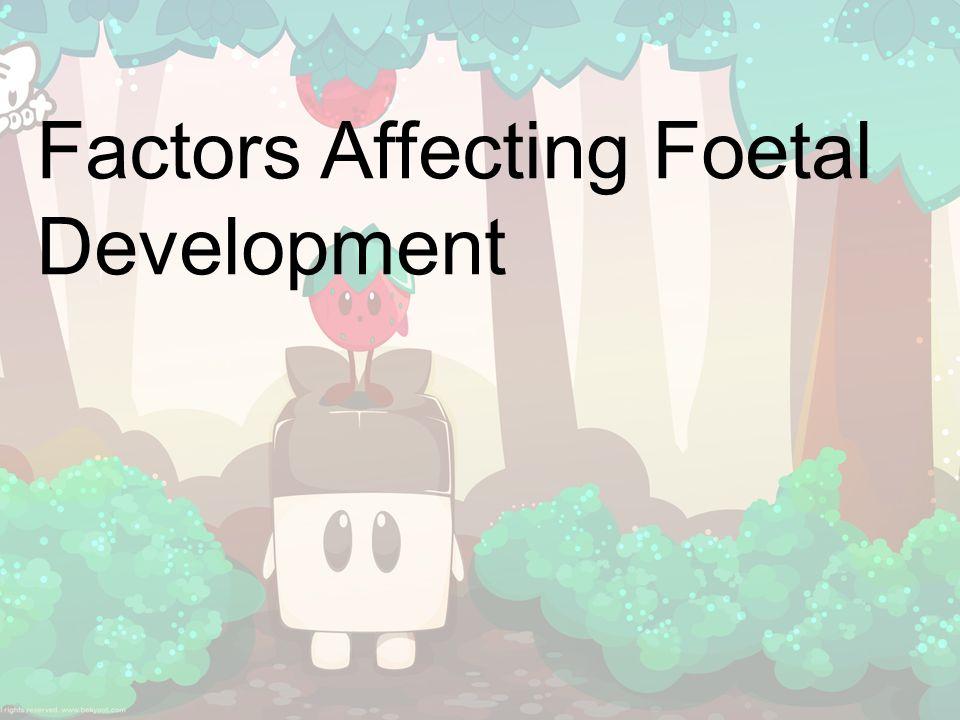 Factors Affecting Foetal Development