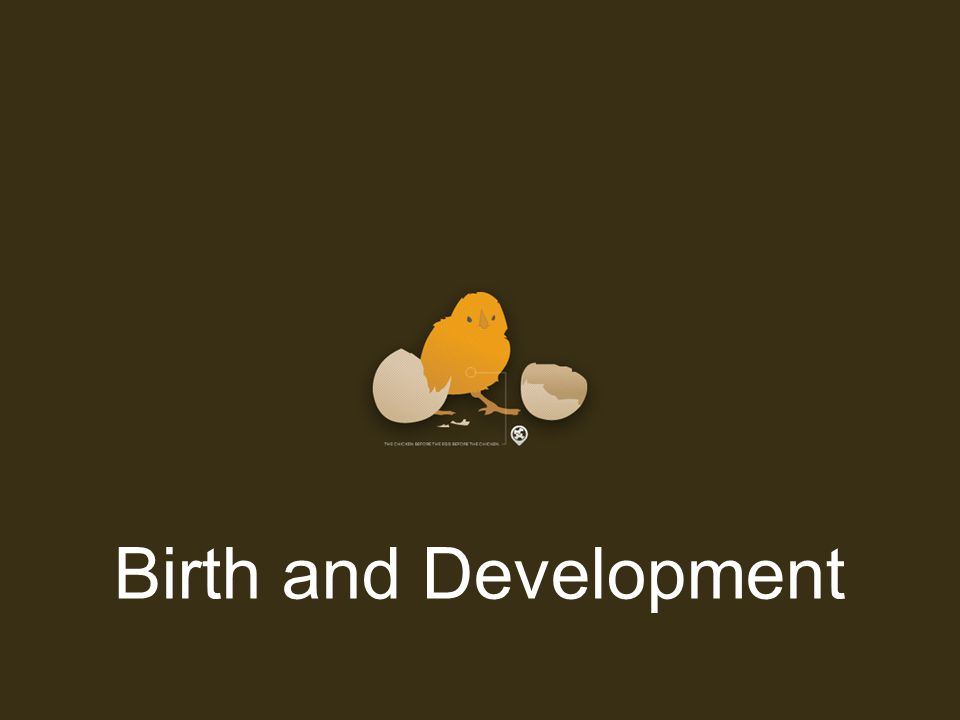 Birth and Development