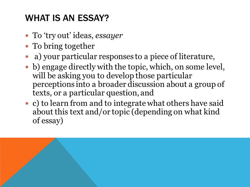 WHAT IS AN ESSAY.