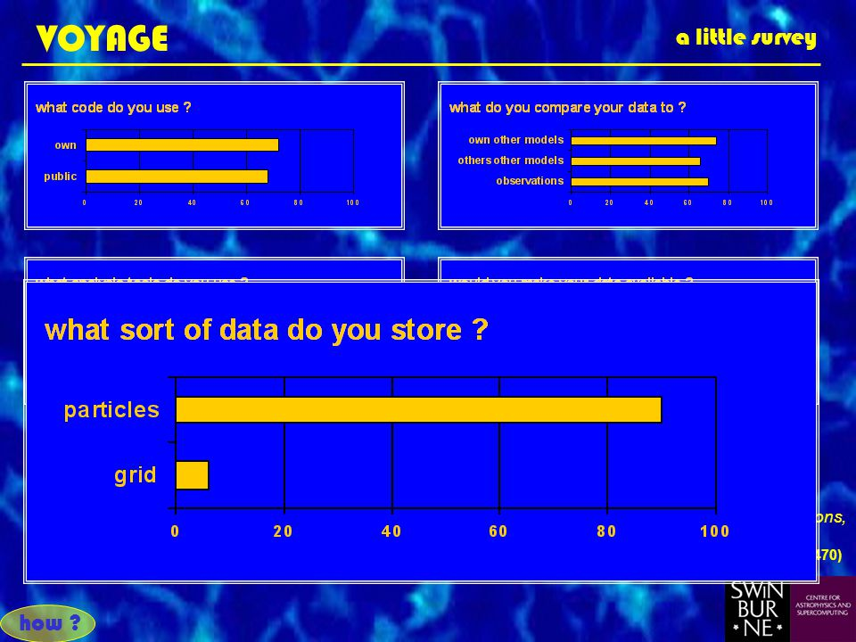 VOYAGE a little survey based on questionaire returned by 53 out of 106, Astrophysical Supercomputing Using Particle Simulations, IAU Symposium 208, Tokyo, July 2001 (P.