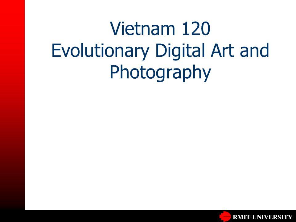 RMIT UNIVERSITY Vietnam 120 Evolutionary Digital Art and Photography