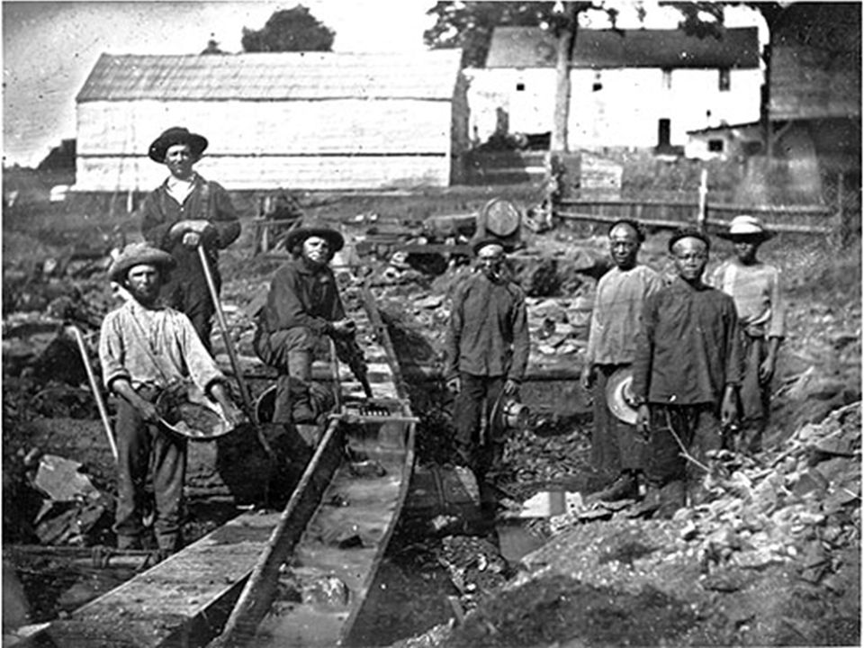 In 1851, people from all over the world came in search of gold in Ballarat, Victoria.
