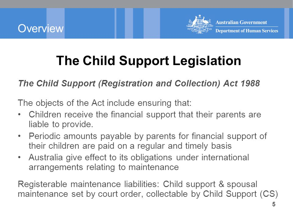 Overview The Child Support Legislation The Child Support (Assessment) Act 1989 The objects of the Act include ensuring that: Children receive a proper level of financial support from their parents based on their financial capacity.