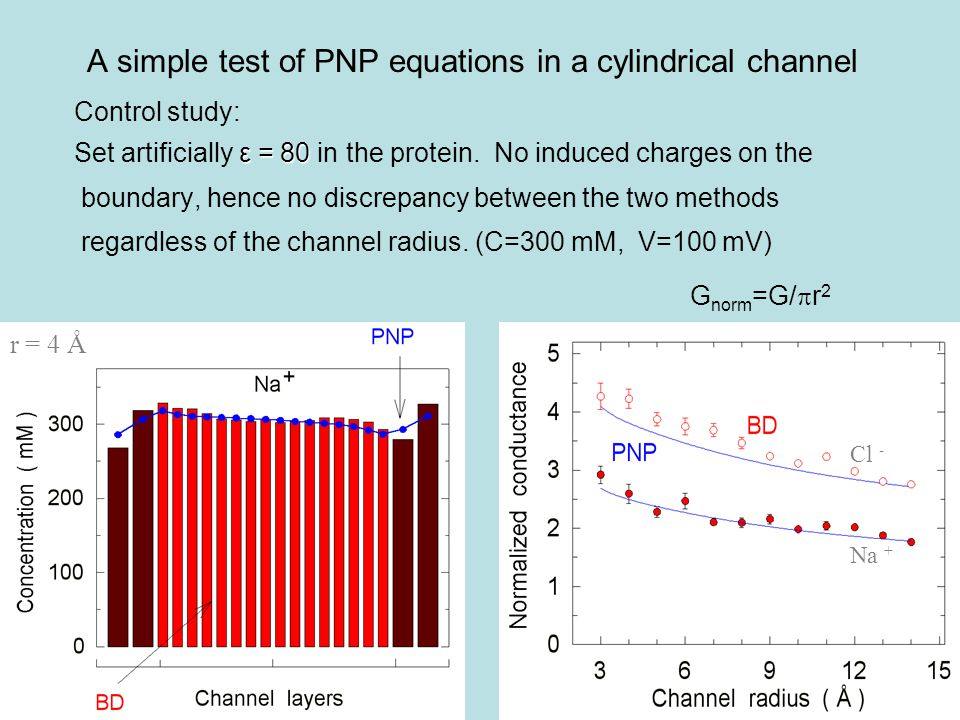 A simple test of PNP equations in a cylindrical channel Control study: ε = 80 Set artificially ε = 80 in the protein.