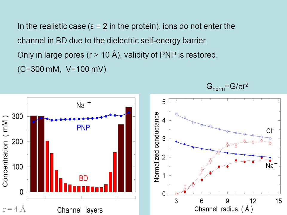 r = 4 Å ε = 2 In the realistic case (ε = 2 in the protein), ions do not enter the channel in BD due to the dielectric self-energy barrier.