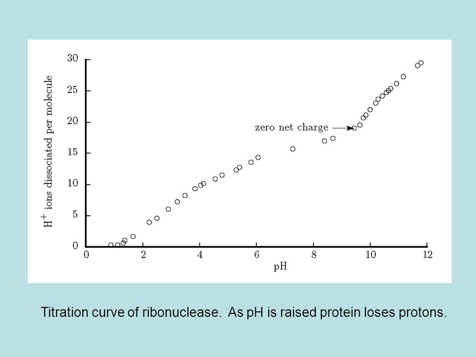 Titration curve of ribonuclease. As pH is raised protein loses protons.