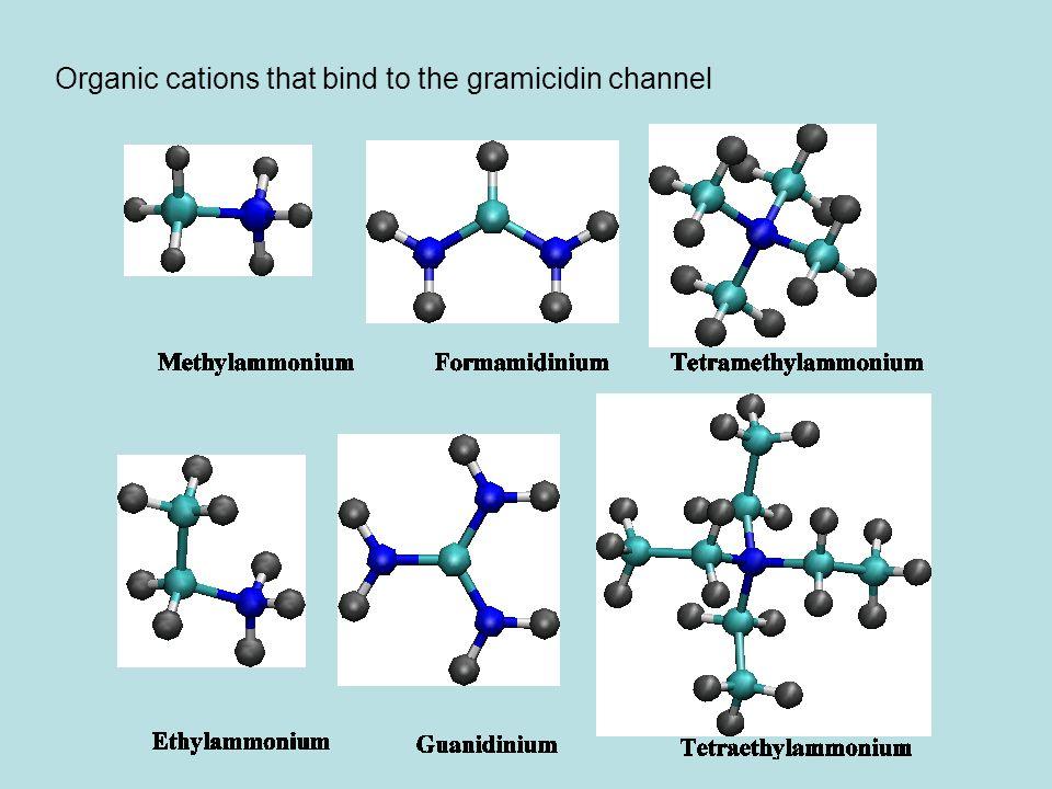 Methylammonium Ethylammonium Formamidinum Guanidinum TMA TEA