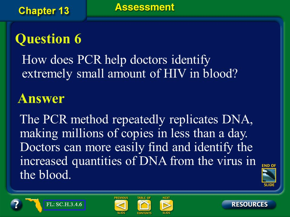 Chapter Assessment Question 5 The technique of using heat to separate strands of DNA is called _______.