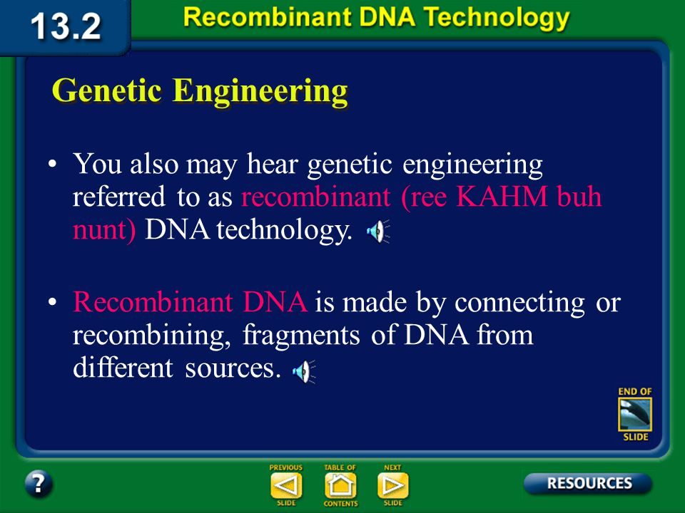 Section 13.2 Summary – pages 341 - 348 Genetic Engineering Genetic engineering is a faster and more reliable method for increasing the frequency of a specific allele in a population.