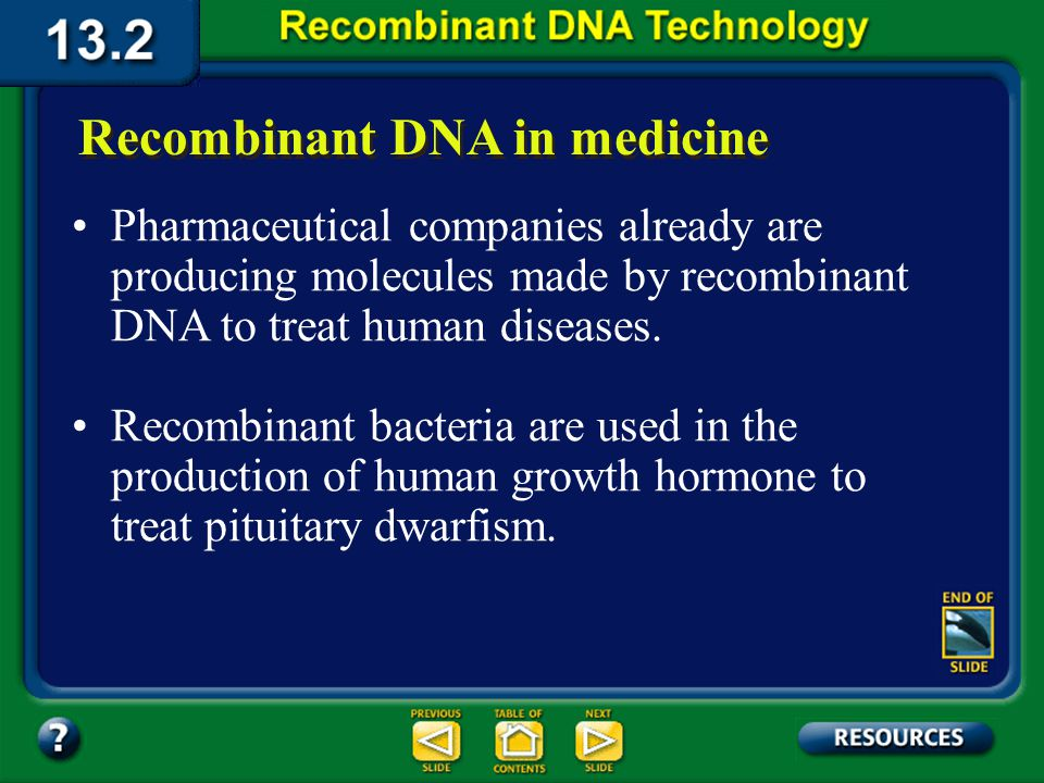 Section 13.2 Summary – pages 341 - 348 Applications of DNA Technology The production of cheese, laundry detergents, pulp and paper production, and sewage treatment have all been enhanced by the use of recombinant DNA techniques that increase enzyme activity, stability, and specificity.